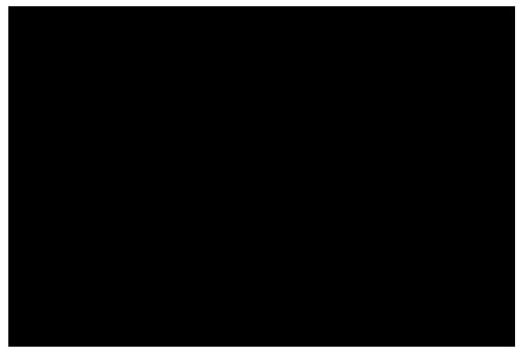 Spot tahranpoisto logo